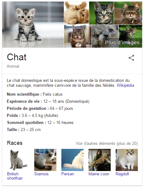 chat google featured snippet