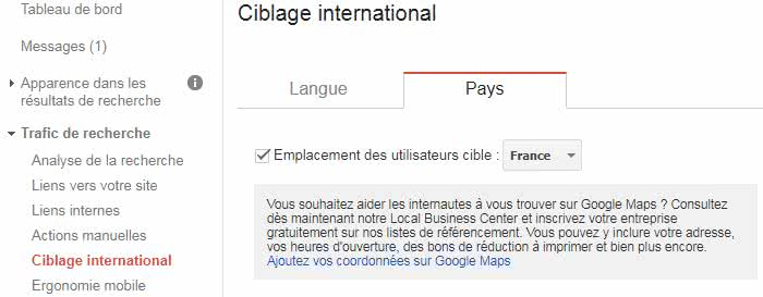 ciblage-international-search-console